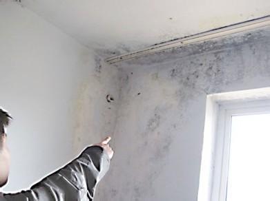 [供应]苏州家庭房屋室内墙壁渗水发黑(发霉)要怎么做防水(防潮)处理?